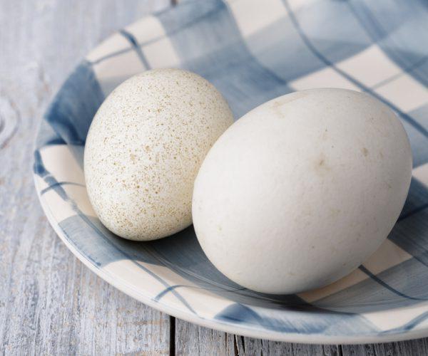 урология у мужчин увеличения яичко